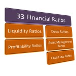 33FinancialRatios