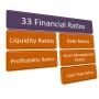 33FinancialRatios